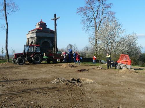 Sázíme stromy 2012