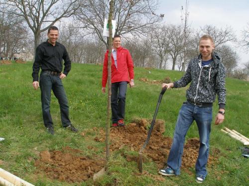 Sázíme stromy 2010